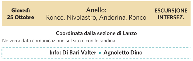 anello ronco.png