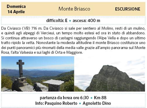 Briasco.png